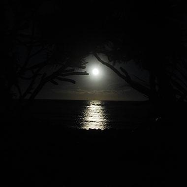 月のリズムでデトックス