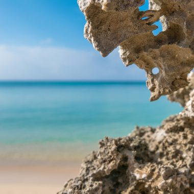 バイオリズムを整える海水ミネラル
